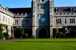 Cork Language Institute